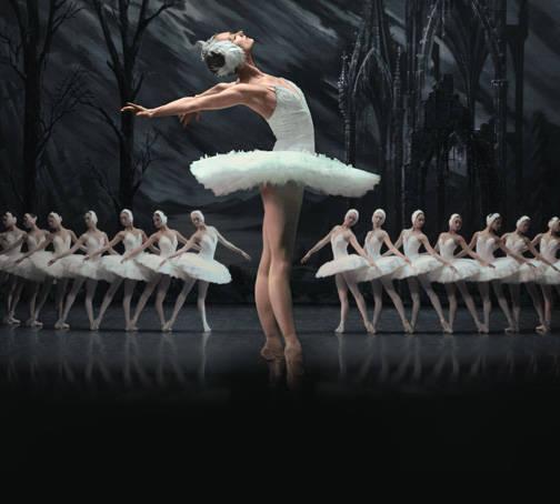 2019 상트 페테르부르크 발레 씨어터 백조의 호수 내한공연