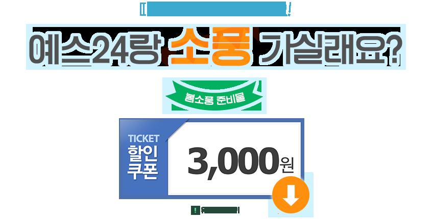 [봄소풍] 3천원 할인