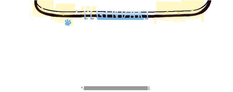 LEGENDARY MUSICAL