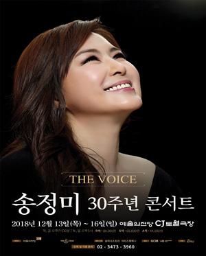 송정미 30주년 콘서트 The Voice
