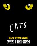 캣츠 내한공연 앙코르 (Musical CATS)