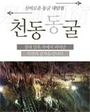 [단양] 천동동굴 : 석회동굴, 단양명소