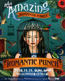 로맨틱펀치 단독공연 (84번째 로맨틱파티 AMAZING)